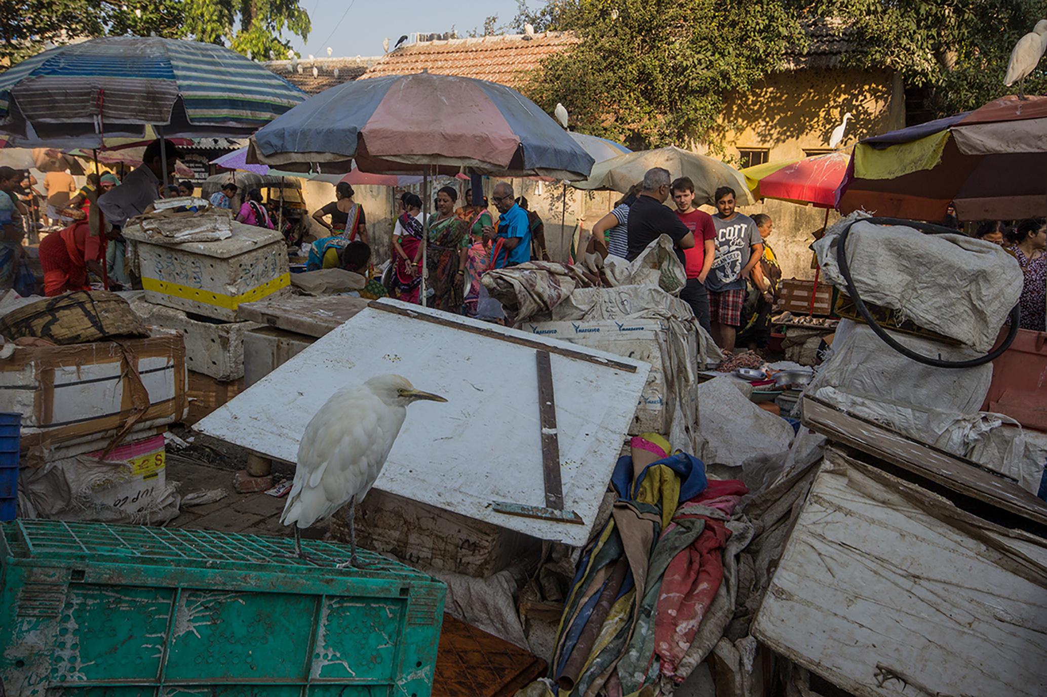 mumbai-market-2groß